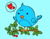 Twitter uccello