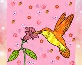 Colibrì con un fiore