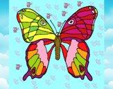 Disegno Farfalla 7a pitturato su Giulia2009