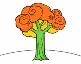 Un grande albero