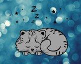 Disegno Gattino addormentato pitturato su Mathias