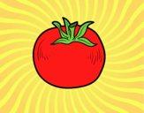 Disegno Pomodoro ecologico pitturato su Mathias