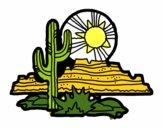 Deserto di Colorado