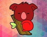 Koala bebè