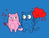 Amore di gatti