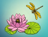 Disegno Fiore di loto pitturato su stellanera