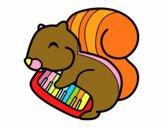 Scoiattolo pianista