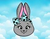Muso di coniglietto