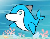 Delfino comune