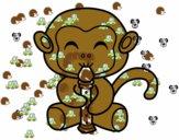 Scimmia flautista