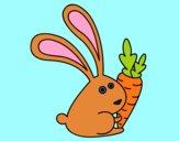 Coniglio con carota