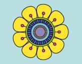 Mandala a forma di fiore