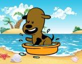 Un cagnolino nella vasca da bagno