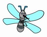 Zanzara con grandi ali