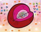 Disegno Melone Galia pitturato su AIKINA79