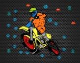 Disegno Motocross pitturato su amirotto