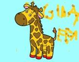 Una giraffa