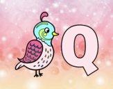 Q di Quetzal