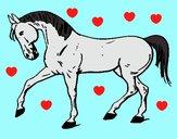 Cavallo con la zampa alzata