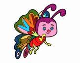 Farfalla civettuola