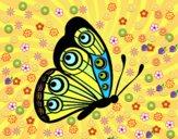 Farfalla destra